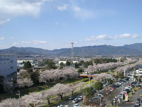 Sanagawa01