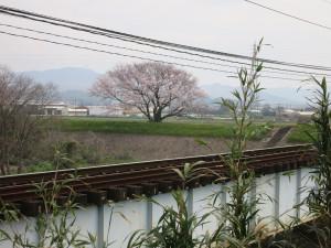 Yokosuka02
